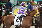 HALLANDALE BEACH, FL- APRIL 02: #2 Fellowship with jockey Jose Lezcano up on post parade for the Florida Derby at Gulfstream Park on April 02, 2016 in Hallandale Beach, Florida. (Photo by Arron Haggart/Eclipse Sportswire/Getty Images)