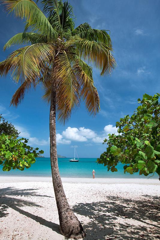 Beach at Megan's Bay with  woman boat and palm tree. St. Thomas. US Virgin Islands.
