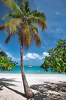 Beach at Megan's Bay with  woman boat and palm tree. St. Thomas. US Virgin Islands.