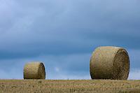 Wighton, Norfolk, England, 04/08/2009..Norfolk cornfield at harvest time.