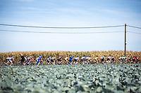 peloton<br /> <br /> 104th Kampioenschap van Vlaanderen 2019<br /> One Day Race: Koolskamp > Koolskamp 186km (UCI 1.1)<br /> ©kramon