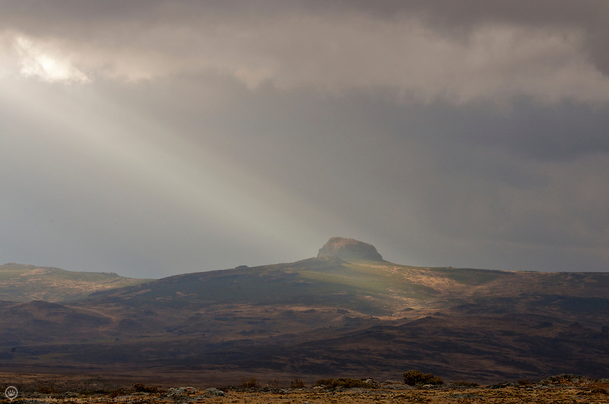 Crepuscular ray streams through the clouds over the Web Valley in the Bale National Park, Ethiopia, Africa.
