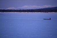 R.Sorlie on Yukon River Headed Towards Kaltag