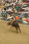 Bull riding, Jordan Valley Big Loop Rodeo.