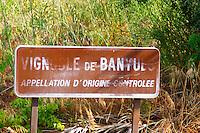 Vignoble vineyards de Banyuls Appellation d'Origine Controlee. Collioure. Roussillon. France. Europe.