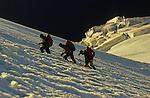 Progression sur le galcier Hohbalm à 3330 m)