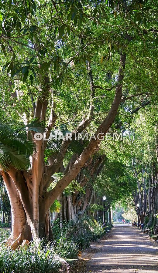 Parque Jardim da Luz em São Paulo. 2021. Foto © Juca Martins.