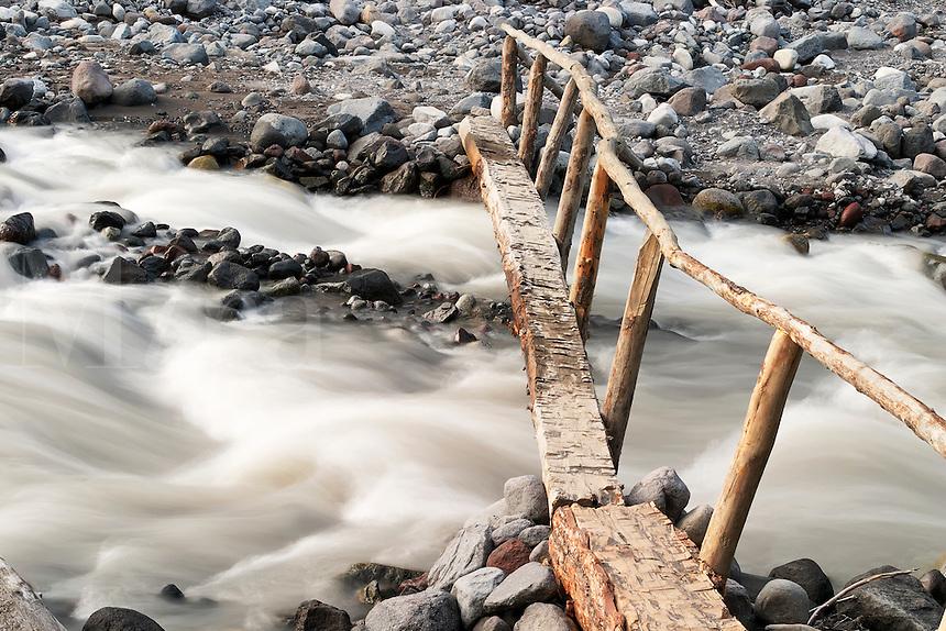 Foot log bridge over Nisqually River near Cougar Rock Campground, Mount Rainier National Park, Washington, US