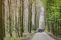 peloton in the forest<br /> <br /> 52nd Amstel Gold Race (1.UWT)<br /> 1 Day Race: Maastricht › Berg en Terblijt (264km)