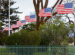 US flags flying in the wind at the military cemetery at Fort Missoula ion Missoula, Montana