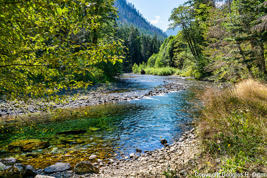 The Hamma Hamma River flows from Olympic Naational Park through Olympic National Forest on it's way to Washington's Hood Canal.
