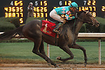 HOT SPRINGS, AR - FEBRUARY 19: My Boy Jack #1, with jockey Kent Desormeaux aboard after crossing the finish line in the Southwest Stakes at Oaklawn Park on February 19, 2018 in Hot Springs, Arkansas. (Photo by Justin Manning/Eclipse Sportswire/Getty Images)