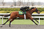 April 03, 2014: Hip 118 Colonel John - In Seconds consigned by Wavertree Stables worked 1/4 in 21:1.  Candice Chavez/ESW/CSM