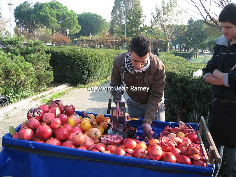Pomegranate Juice Stand