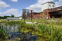 GERMANY, Berlin, Tilapia fish farm of start up ECF, the fish farm is combined with green houses to cultivate vegetables irrigated with sewage water from the fish ponds / DEUTSCHLAND, Berlin, Tilapia Gemuese- und Fischfarm des start-up Unternehmens ECF auf dem Gelaende der ehemaligen Schultheiss Malzfabrik, mit dem naehrstoffhaltigem Abwasser der Fischtanks wird Basilikum im Gewaechshaus bewaessert, Aquaponic System, als Hauptstadt Barsch werden Fisch und Basilikum in Berlin ueber Rewe und Metro lokal vermarket