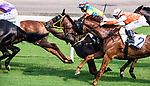 Horse Glenealy Prize #2 ridden by Brett Prebble competes during the race 6 of HKJC Horse Racing 2017-18 at the Sha Tin Racecourse on 16 September 2017 in Hong Kong, China. Photo by Victor Fraile / Power Sport Images