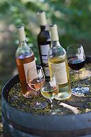 France/13/Bouches du Rhone/Camargue/Parc Naturel Régionnal de Camargue/Arles: Les vins bio de Pierre Cartier, Domaine de Baujeu - IGP Bouches-du-Rhône Terre de Camargue