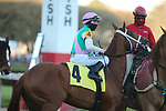 March 6, 2021: Sun Path (4) with jockey Joseph Talamo aboard before the Honeybee Stakes (G3) at Oaklawn Racing Casino Resort in Hot Springs, Arkansas on March 6, 2021. Justin Manning/Eclipse Sportswire/CSM