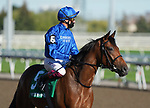 September 19, 2021: Wild Beauty (GB) #5, ridden by jockey Frankie Dettori wins the Grade 1 Natalma Stakes on the turf at Woodbine Racetrack in Toronto, Ontario Canada on September 19th, 2021. Scott Serio/Eclipse Sportswire/CSM