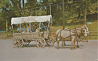 Bella Vista Historical Museum<br />