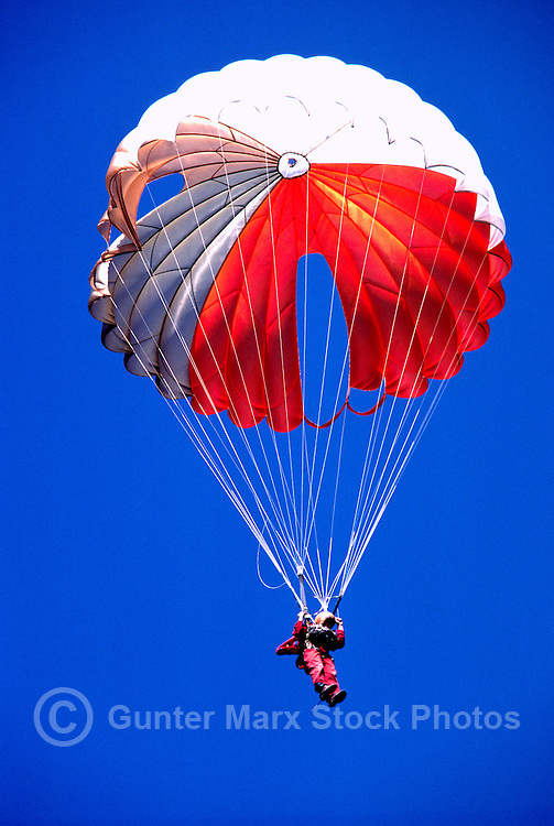 One Sky Diver / Parachute Jumper skydiving and jumping with a Red and White Parachute in a Blue Sky