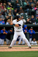 Catcher Brandon Brosher (25) of the Columbia Fireflies bats in a game against the Lakewood BlueClaws on Friday, May 5, 2017, at Spirit Communications Park in Columbia, South Carolina. Lakewood won, 12-2. (Tom Priddy/Four Seam Images)
