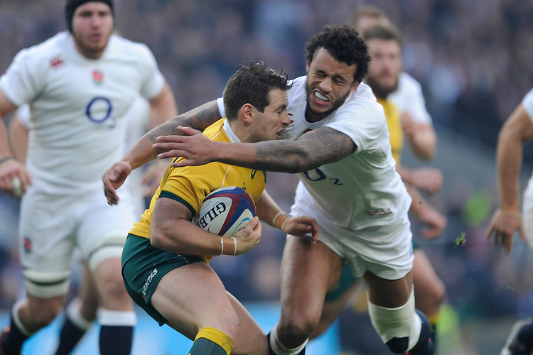 Nick Phipps of Australia is tackled by Courtney Lawes of England during the QBE International match between England and Australia at Twickenham Stadium on Saturday 29th November 2014 (Photo by Rob Munro)