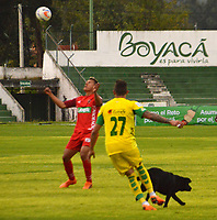 TUNJA- COLOMBIA, 4-11-2018: Una perrita  ingreso al campo de juego durante partido entre Patriotas Boyacá contra Leones por la fecha 18 de la Liga Águila II 2018 jugado en el estadio La Independencia de la ciudad de Tunja. /A dog entered the field during the game between Patriotas Boyacá against Leones.Action game between  Patriotas Boyaca and Leones during the match for the date 18 of the Liga Aguila II 2018 played at the La Independencia stadium in Tunja city. Photo: VizzorImage / José Miguel Palencia / Contribuidor