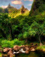 Plants in Limahuli Gardens with Makana Mountain Ridge. Kauai, Hawaii