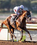 September 26, 2020:  Improbable with Drayden Van Dyke win the Awesome Again Stakes at Santa Anita Park, in Arcadia, California on September 26, 2020.  Evers/Eclipse Sportswire/CSM