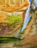 "Lower Calf Creek Falls.  ""Grand Staircase-Escalante National Monument, Utah."