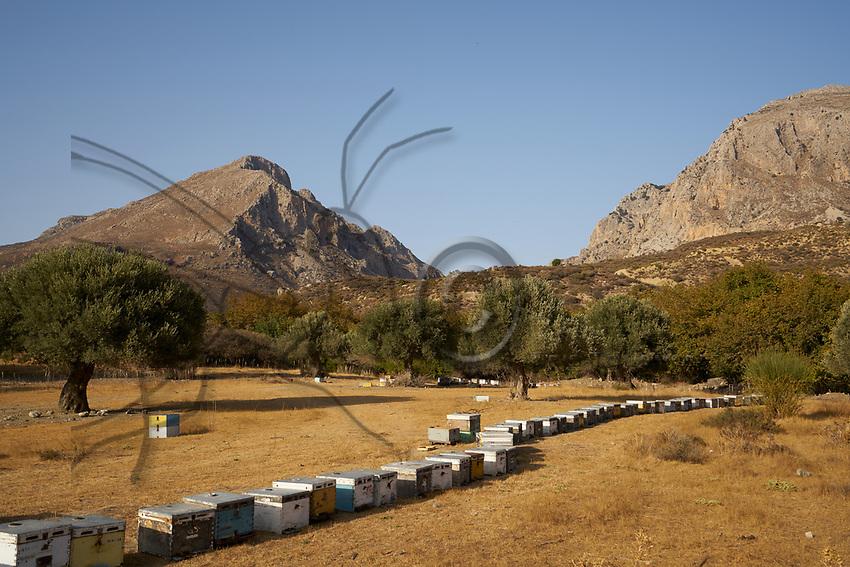 An apiary in Preveli in Crete. Crete has been known for its thyme honey since Antiquity.<br /> Un rucher près de Preveli en Crête. La Crête est réputée pour son miel de thym depuis l'antiquité.