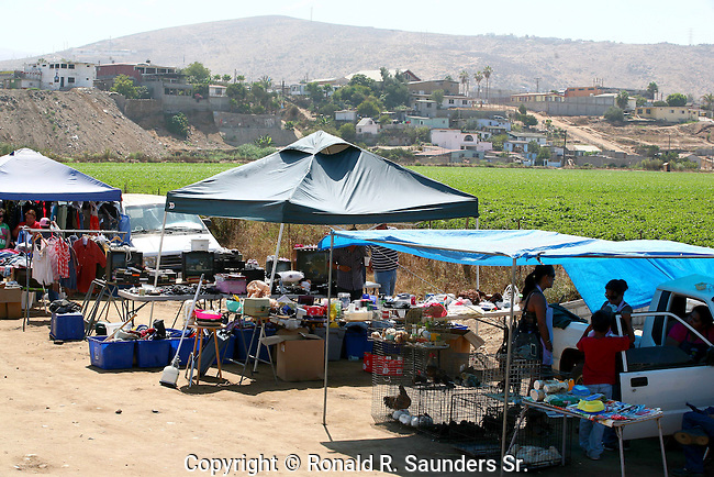 Buyers and sellers come together at the open field weekend flea market at Maneadoro, Baja California, mexico