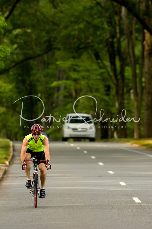 A man rides his bike down Queens Road West in the Myers Park neighborhood in Charlotte, NC. Myers Park is one of the premier neighborhoods in North America and known for its large canopy of trees.