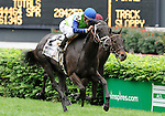 10 May 1: Phola (no. 2), ridden by Ramon Dominguez and trained by Todd Pletcher, wins the 25th running of the grade 2 Churchill Distaff Turf Mile Stakes for fillies and mares three years old and upward at Churchill Downs in Louisville, Kentucky.