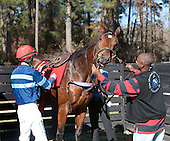 3rd Springdale Filly/Mare Hurdle Stakes -