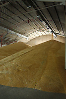 AGRI Raccolta del grano. Grain harvest