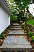Stone pathway in the garden