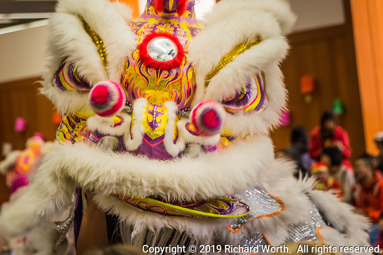 Close-up of one of the Lion Dance performers during the Lunar New Year celebration in San Leandro,California.