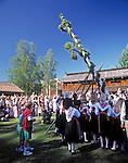 Sweden, Province Dalarnas laen, Leksand: Midsummer, setting up the midsummer pole | Schweden, Provinz Dalarnas laen, Leksand: Mittsommerfest , Aufstellen des Mittsommerbaums