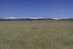 Grassland in Boulder County public land, Colorado, USA. Private guided tours to Indian Peaks.