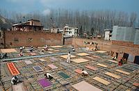 NEPAL Kathmandu, carpet production at factory / NEPAL Kathmandu, Herstellung von handgewebten Teppichen in einer Fabrik