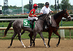 June 21, 2014:  Ol Sanish and jockey Leandro Goncalves in the post parade of the Debutante Stakes at Churchill.  Owner Krenz Stables, trainer James Baker. ©Mary M. Meek/ESW/CSM