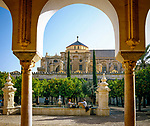 Spanien, Andalusien, Córdoba: Mezquita, Hof, Patio de Naranjos, Orangenbaeume | Spain, Andalusia, Córdoba: The Mezquita, yard, Patio de Naranjos