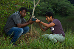 Fishing Cat (Prionailurus viverrinus) biologists, Maduranga Ranaweera and Anya Ratnayaka, setting up camera trap in urban wetland, Urban Fishing Cat Project, Diyasaru Park, Colombo, Sri Lanka