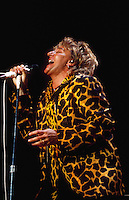 Portrait of singer Rod Stewart in concert.