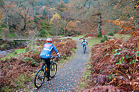 Two cyclists at Powerscourt Estate, Enniskerry, County Wicklow, Ireland.