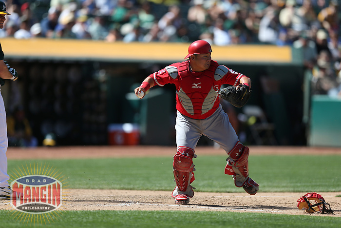 OAKLAND, CA - MAY 1:  Hank Conger #16 of the Los Angeles Angels makes a play during the game against the Oakland Athletics at O.co Coliseum on May 1, 2013 in Oakland, California. Photo by Brad Mangin
