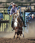 Colt Castodio competes in the calf-roping event at the Minden Ranch Rodeo action Saturday, July 21, 2012..Photo by Cathleen Allison