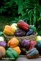 HS41-177x   Pepper - sweet bell peppers, Islander, Yankee Bell, Northstar, Corona Secret, Bianca varieties
